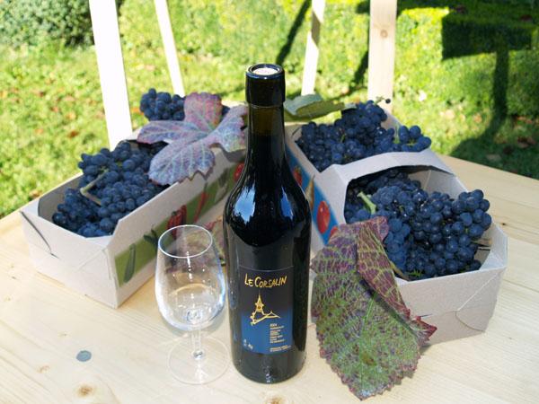 рецепт приготовления сока виноградного в домашних условиях
